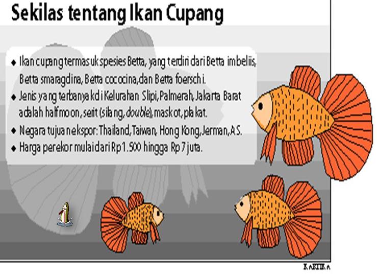 Cara Budidaya Ikan Yang Baik Ppt - InfoAkuakultur.com